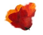 מירי לביא – ציורים למכירה