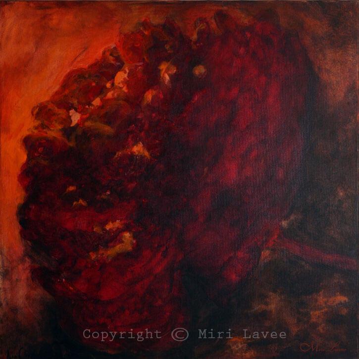 תמונת פרח אדום