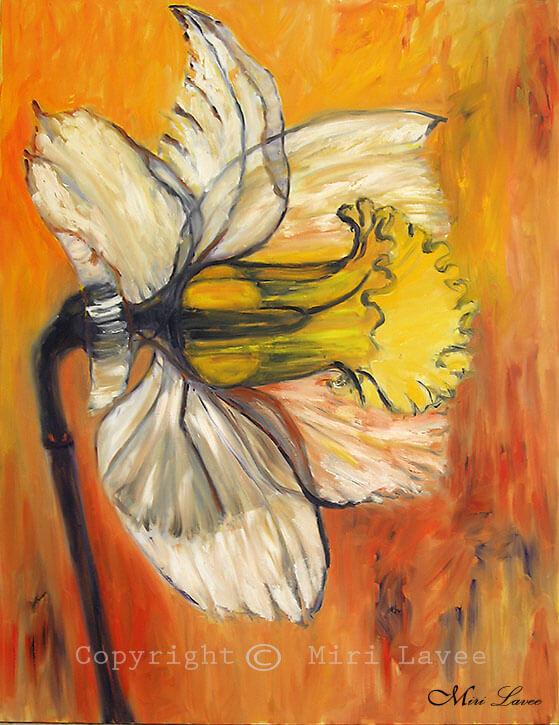 ציור גדול נרקיס בכתום ולבן