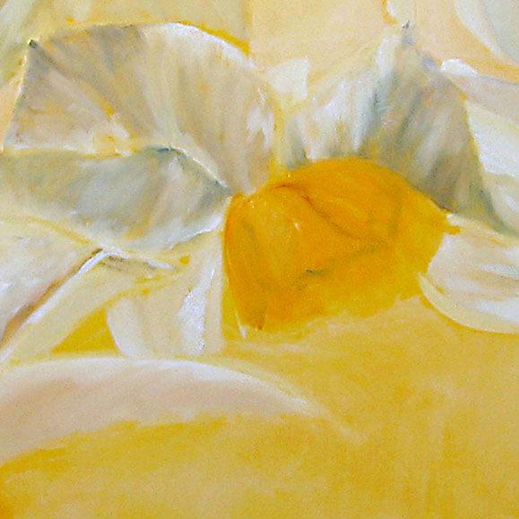 ציור פרחים לבנים נרקיסים