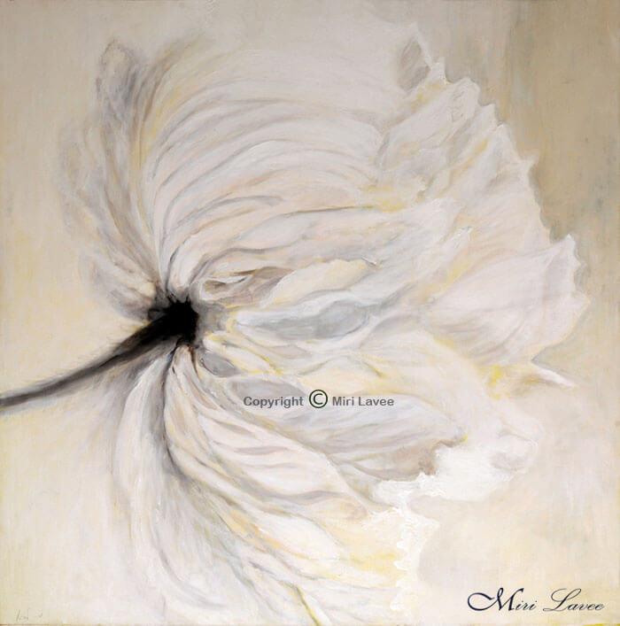 פרח לבן