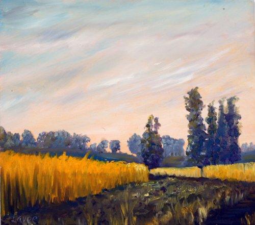 נוף שדה חיטה