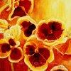 תמונת פרחים כובע הנזיר