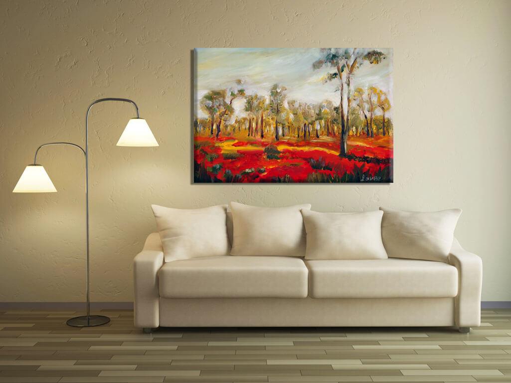 תמונת נוף כלניות אדומות בנגב
