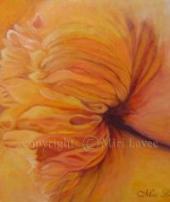 ציור פרח גדול